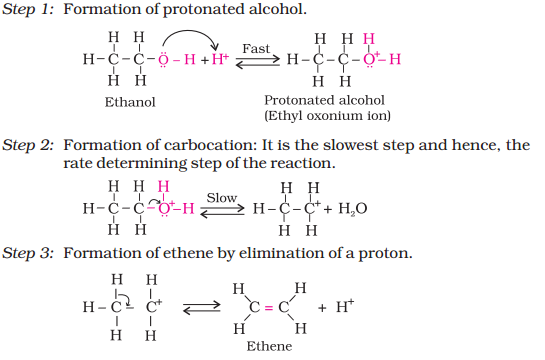alcochem7.png