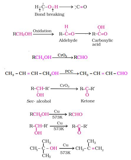 alcochem7png